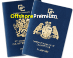 Second Passport – Second Citizenship | What are your options